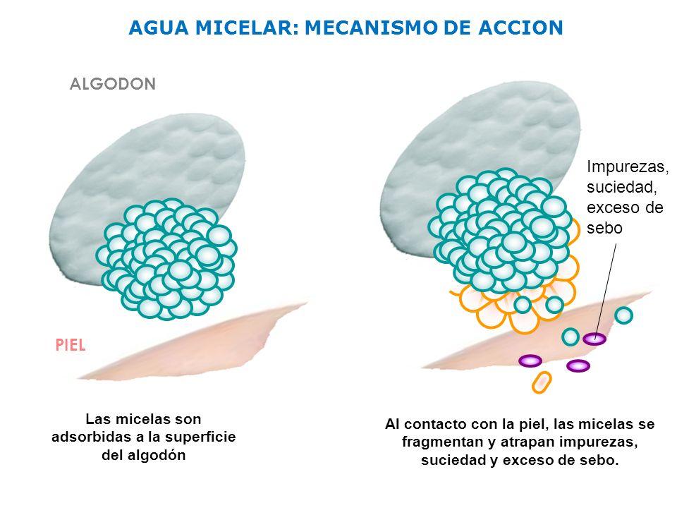 AGUA+MICELAR-+MECANISMO+DE+ACCION